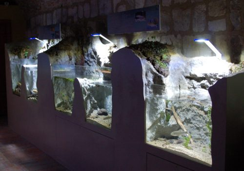 Acquario di Bolsena